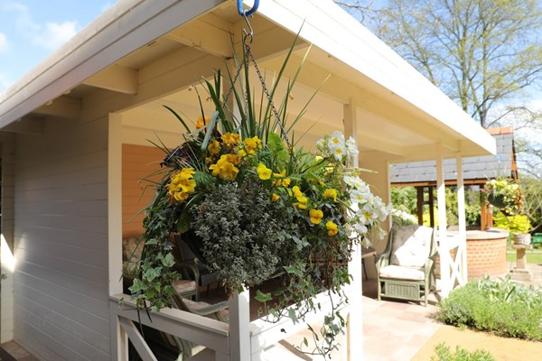 Beautiful hanging baskets in the sunshine hanging from the sheltered seating area
