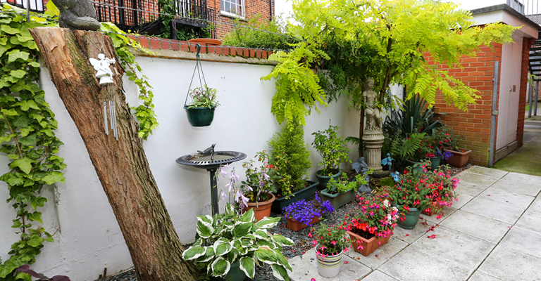 Patio at Serenus Court with lots of beautiful pots of plants in lots of colours