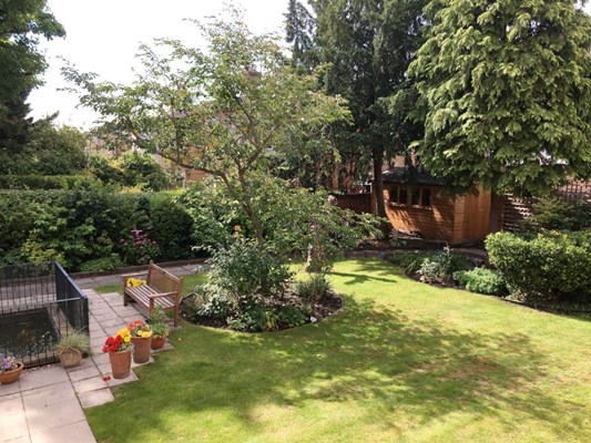 Beautiful, sunny garden with tree in the middle, pond and bench where residents can relax