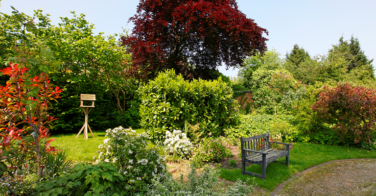 Garden in bloom with bench, bird feeder and beautiful plants