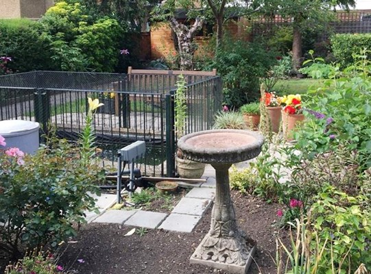 Patio area with bird bath, pond and bench where residents can relax in the outdoors at Rider House