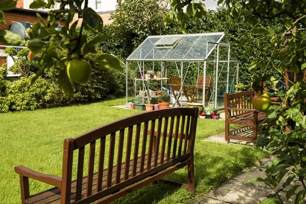 Apple trees in the garden with a greenhouse and wooden benches