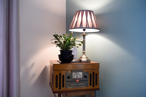 A music player in the corner with a plant and lamp on top
