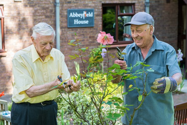 Two residents in the garden pruning the roses
